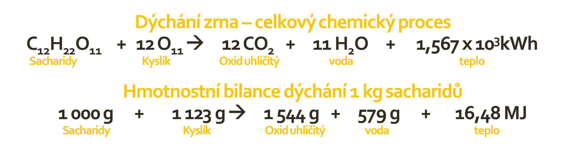 BEDNAR Posklizňové linky - Chemický proces